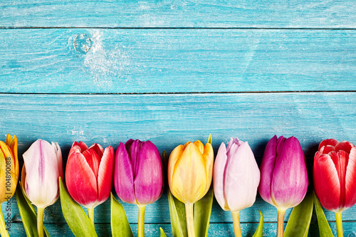Fototapeta Colorful tulips aligned on a rustic wooden surface