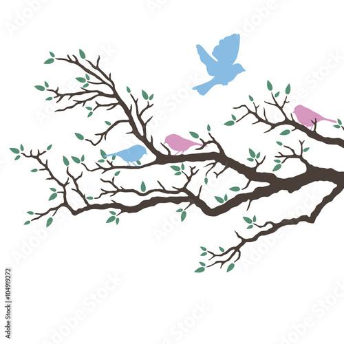 Fotografia  Vogelhochzeit auf einem Ast im Frühling - Hintergrund