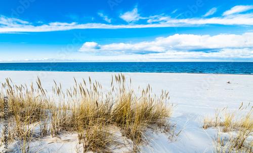 Fototapeta Wydmy sea-landscape-with-sandy-dunes-and-grass