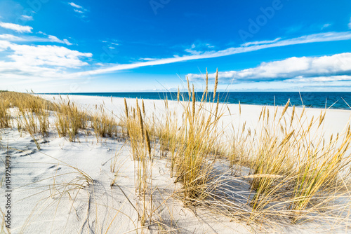 Sea landscape with sandy dunes and grass
