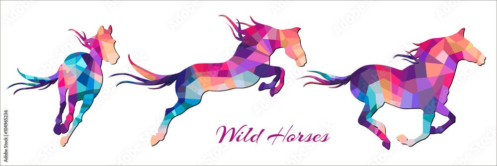 Fototapety, obrazy: wild horses