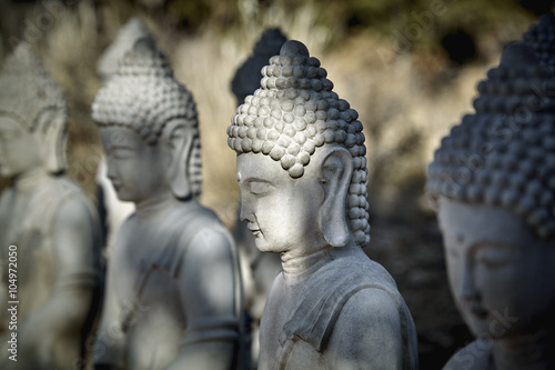 Photo  Meditating Buddha Statues