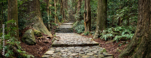 Foto op Canvas Weg in bos Daimon-zaka in