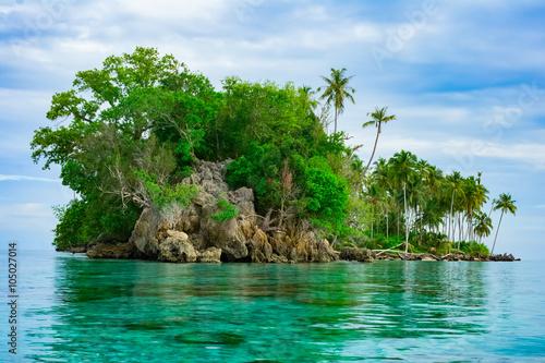 Poster Eiland Remote desert tropical island