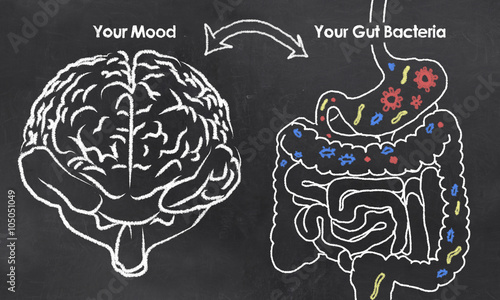 Stampa su Tela  Mood and Gut Bacteria
