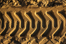 Embossed Trail Excavator Track...