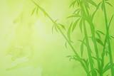 Asian Bamboo Background