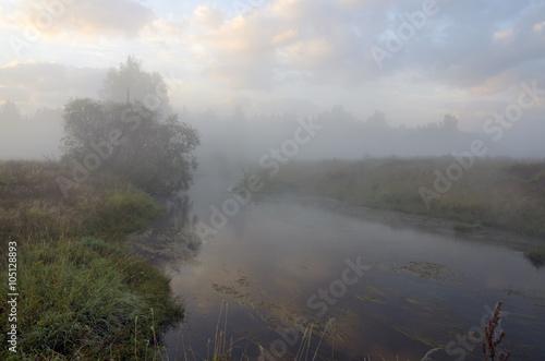 Fototapeten Wald Autumn landscape