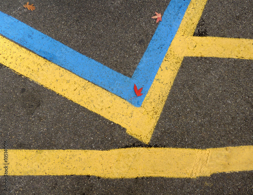 Blue and Yellow Parking Lot Lines