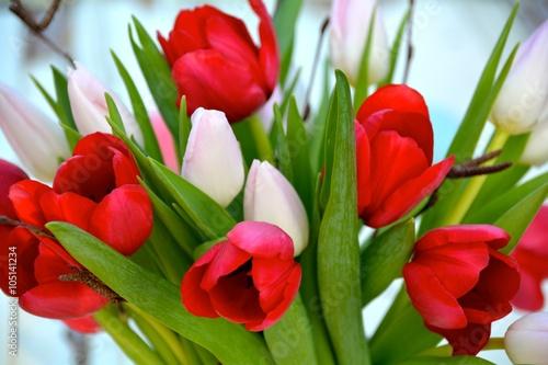 kartke-z-zyczeniami-bukiet-tulipanow