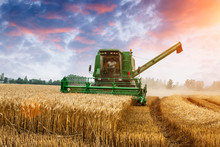 Combine Harvester Harvest Ripe...