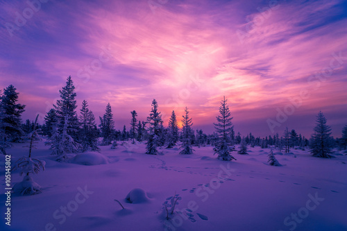 Foto op Aluminium Snoeien Winter landscape with forest, cloudy sky and sunset