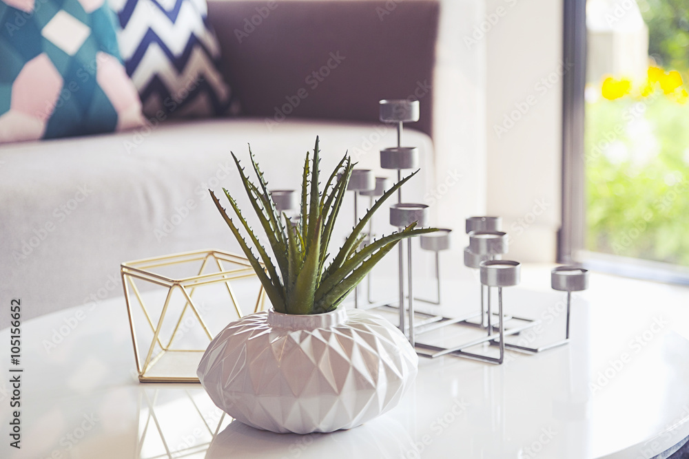 Fototapeta green plant in a vase and candle stand in living room