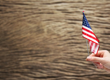 Hand Holding USA Flag