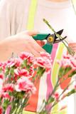 Układanie kwiatów. W kwiaciarni
