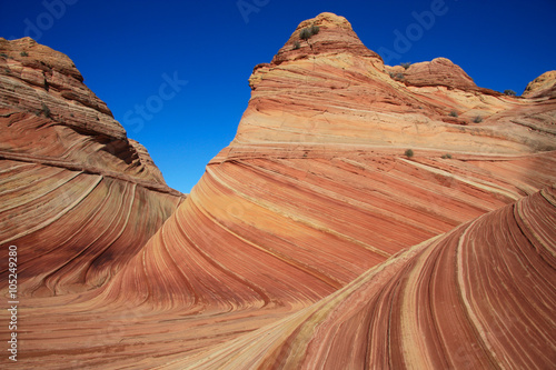 Fotomural Vermilion Cliffs Wilderness