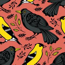 Blackbird And Goldfinch Background
