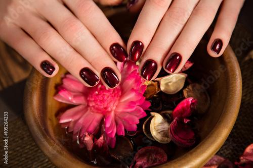 Staande foto Manicure Beautiful classic red manicure on female hand. Close-up.