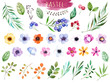 Leinwanddruck Bild - Colorful floral collection with multicolored flowers,leaves,branches,berries and more,Colorful floral collection with 37 watercolor elements.Set of floral elements.Pastel collection