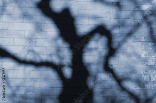 fototapeta na szkło Tree shadow on blue brick wall.