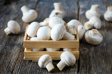 Fresh  white button mushrooms