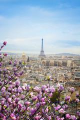 Fototapeta Paryż skyline of Paris with eiffel tower