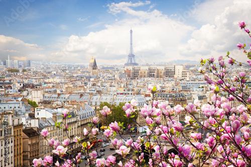 Plakat panoramę Paryża z wieży Eiffla