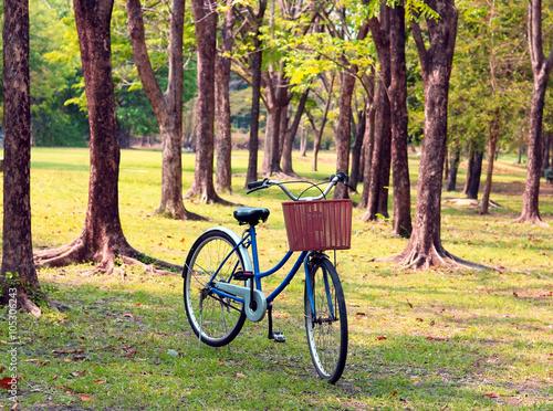 Tuinposter Zwavel geel Vintage bicycle waiting near tree, in vintage retro tone