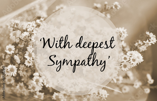 "Fotomural ""With deepest sympathy"" note on small flower sepia tone"