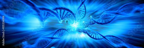 Fotografía  3d de la estructura del ADN, resumen de antecedentes