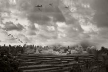 Vietnam War - Artist Recreation