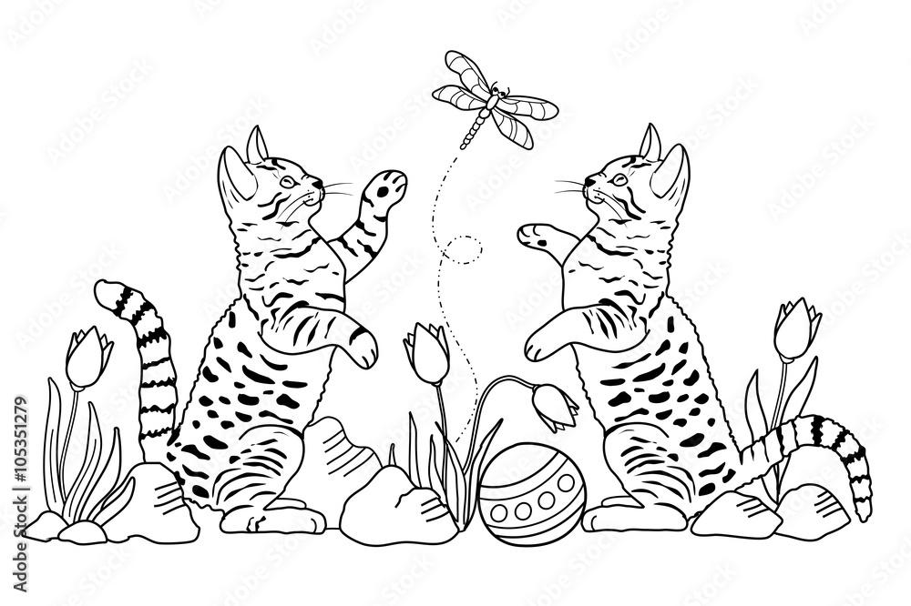 katzen malvorlagen xxl  ein bild zeichnen
