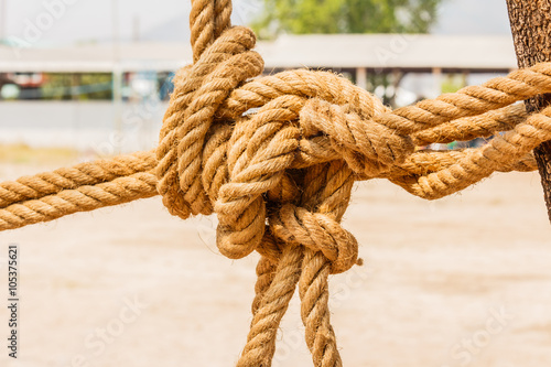 close up shot of manila rope - Buy this stock photo and