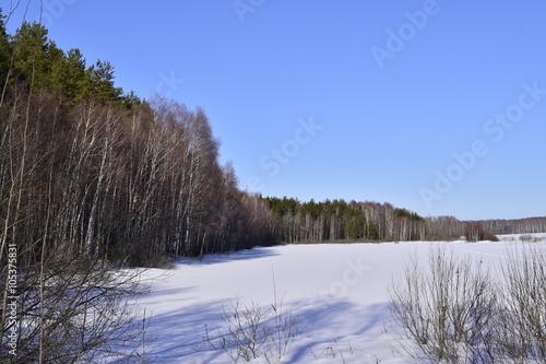 Fototapeten Nordsee зимний лес