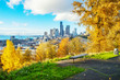 cityscape and skyline of seattle on view from hill