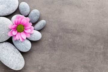Fototapeta na wymiar Spa stones and flowers on grey background.