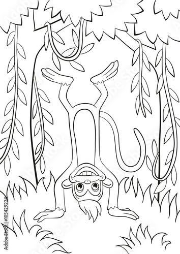 Coloring pages. Little cute monkey is standing udside down ...