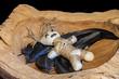 Voodoopuppe in einer Holzschale