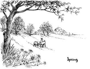 Panel Szklany Krajobraz Spring in the woods sketch