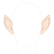 Pointed Ears Of An Elf, Fairy,...