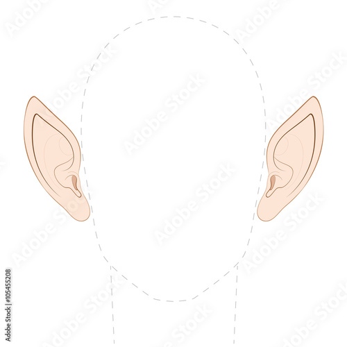 Fototapeta Pointed ears of an elf, fairy, vampire or other fantasy creature, with empty space between them to insert any photo