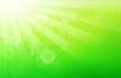 Leinwandbild Motiv Green spring background