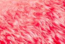 Natural Pink Fur Background