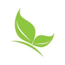 Beauty Green Leaf Butterfly Logo