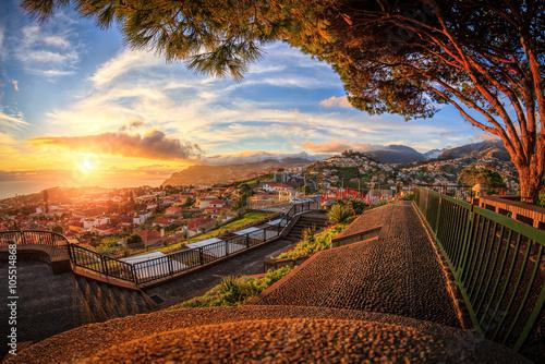 Fotografie, Obraz  Sunset over Funchal (Madeira)