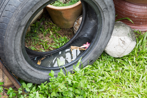 Fotografija Used tires potentially store stagnant water and mosquitoes breeding ground