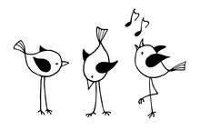 Three Funny Cartoon Birds.