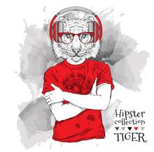 Illustration Of Tiger Hipster ...