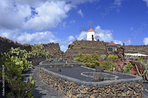 Fotografia  Ogród kaktusów Guatiza, Lanzarote