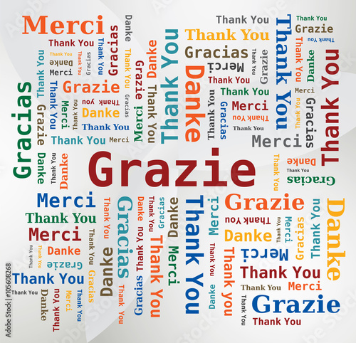 Merci - Thank You - Danke - Grazie - Gracias Nuage de Mots 5 Langues Français An Canvas Print